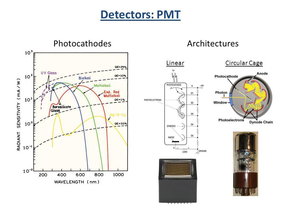 Photocathodes Circular Cage Detectors: PMT Linear Architectures