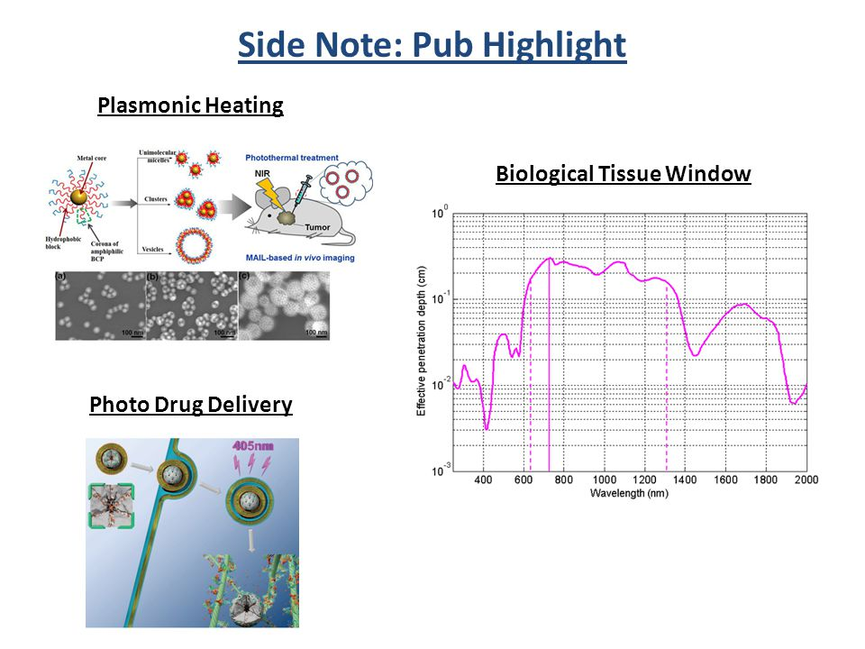 Side Note: Pub Highlight Biological Tissue Window Plasmonic Heating Photo Drug Delivery