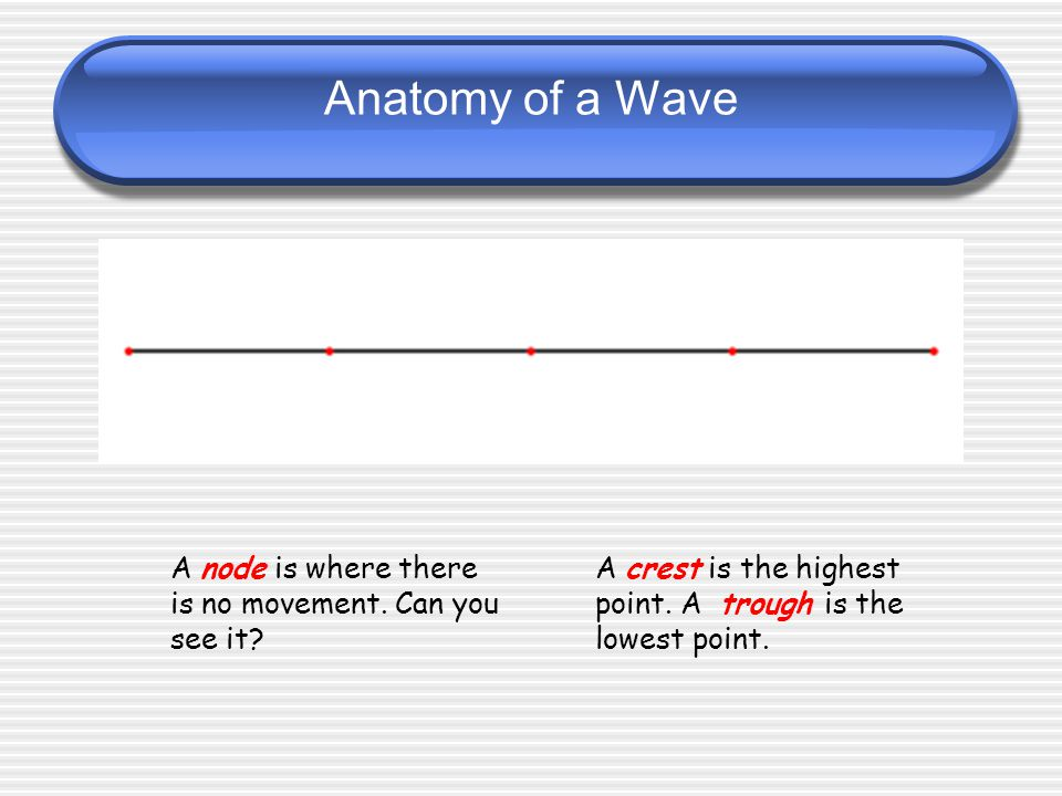 Anatomy of a Wave Anatomy of a wave Amplitude and Wavelength Wave Parts: w/ Frequency A node is where there is no movement.