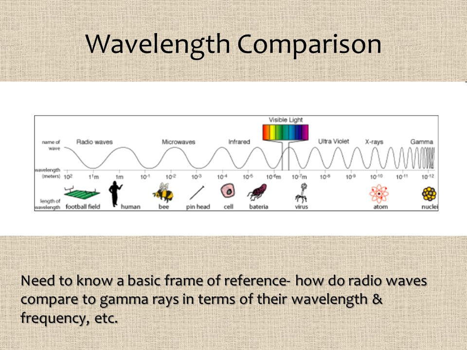 Wavelength Comparison Need to know a basic frame of reference- how do radio waves compare to gamma rays in terms of their wavelength & frequency, etc.