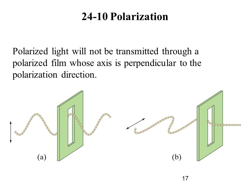 24-10 Polarization Polarized light will not be transmitted through a polarized film whose axis is perpendicular to the polarization direction.