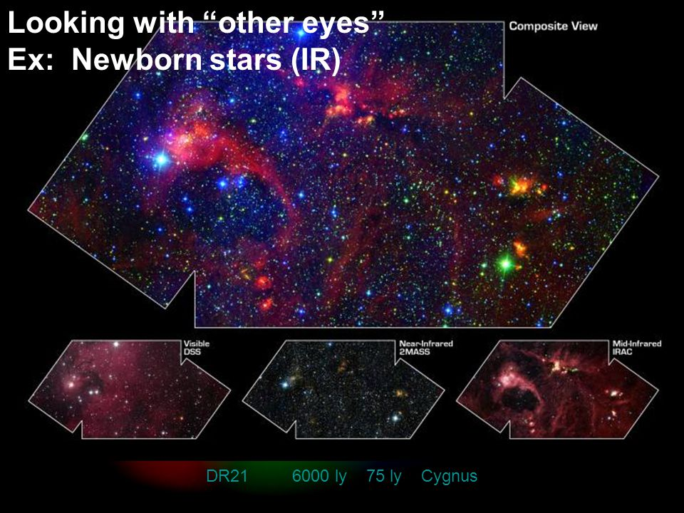 Spectra DR21 6000 ly 75 ly Cygnus Looking with other eyes Ex: Newborn stars (IR)
