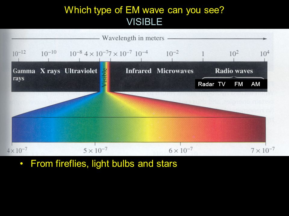 Which type of EM wave can you see VISIBLE Radar TV FM AM From fireflies, light bulbs and stars