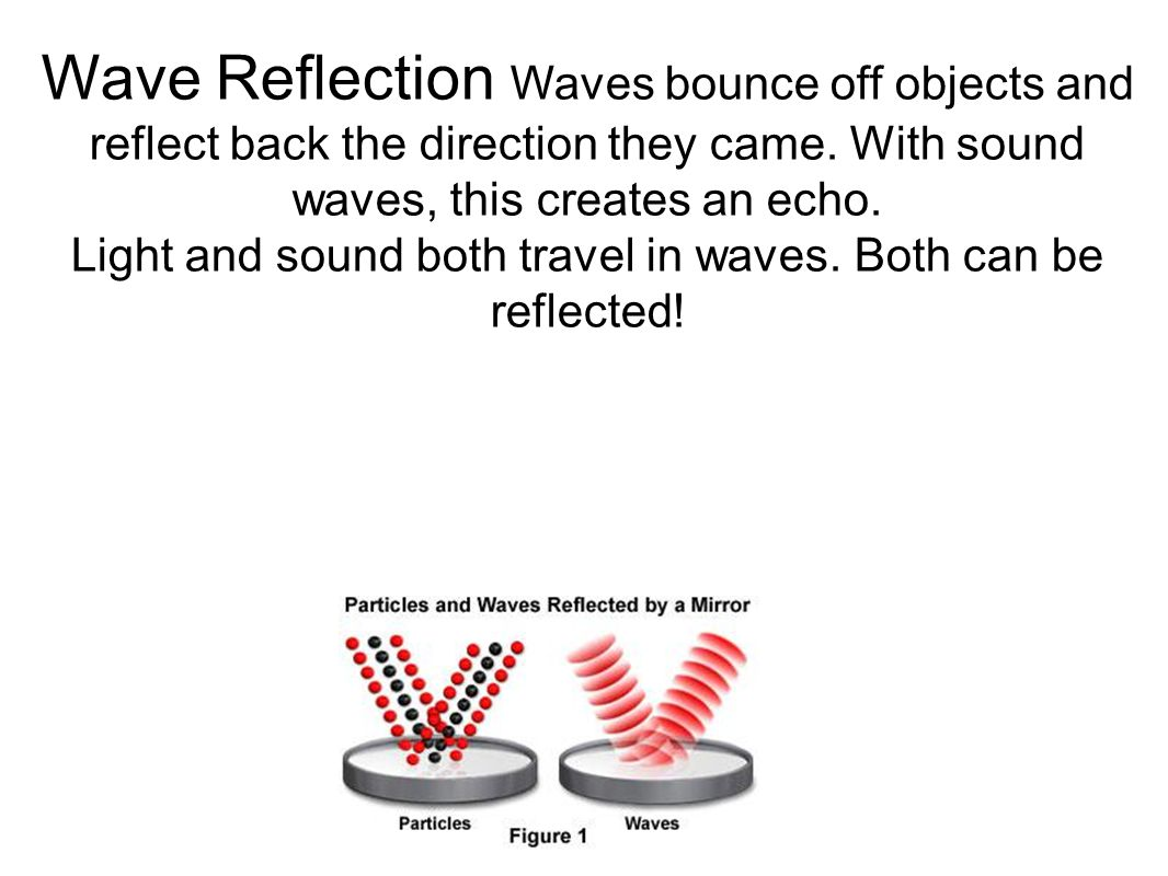 Wave Reflection Waves bounce off objects and reflect back the direction they came. With sound waves, this creates an echo. Light and sound both travel