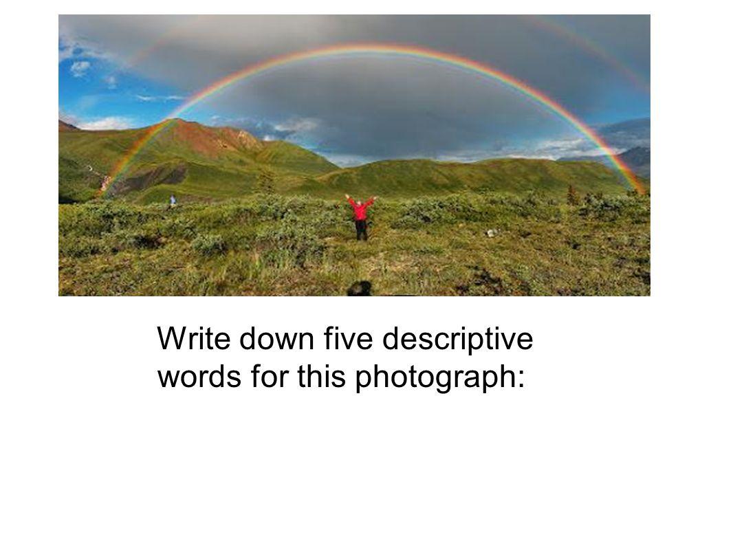 Write down five descriptive words for this photograph: