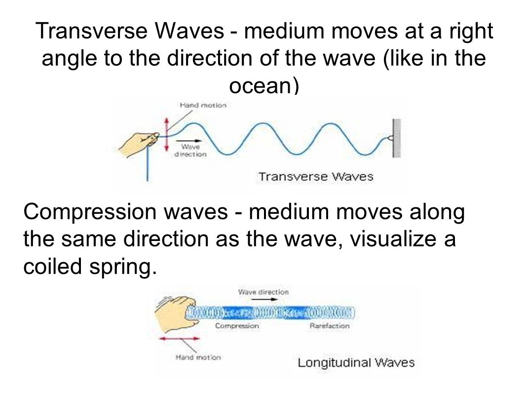 The Parts of a Transverse Wave The high part of the wave is the CREST The low part of the wave is the TROUGH Wavelength = the distance from one point of the wave to the next point