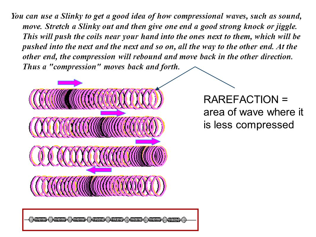 You can use a Slinky to get a good idea of how compressional waves, such as sound, move. Stretch a Slinky out and then give one end a good strong knoc