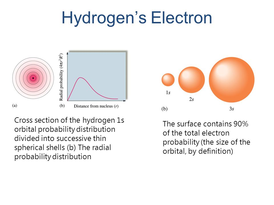 Hydrogen's Electron Cross section of the hydrogen 1s orbital probability distribution divided into successive thin spherical shells (b) The radial pro