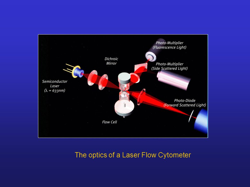 The optics of a Laser Flow Cytometer