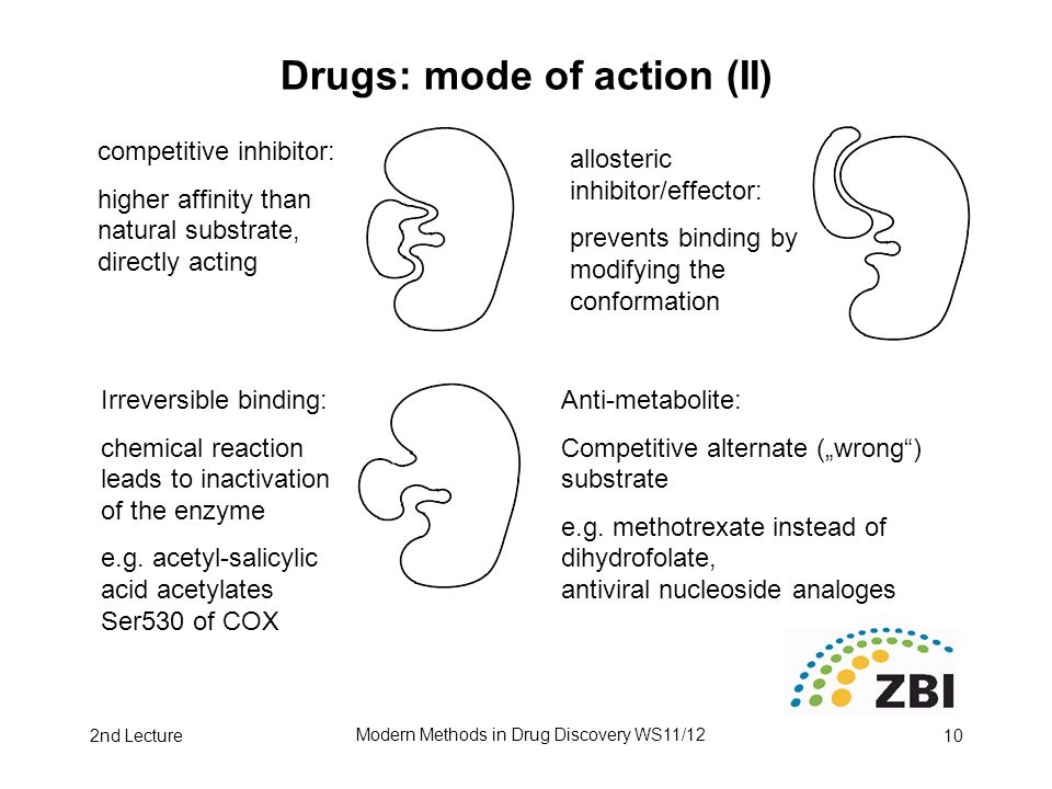 2nd Lecture Modern Methods in Drug Discovery WS11/12 10 Drugs: mode of action (II) competitive inhibitor: higher affinity than natural substrate, directly acting allosteric inhibitor/effector: prevents binding by modifying the conformation Irreversible binding: chemical reaction leads to inactivation of the enzyme e.g.