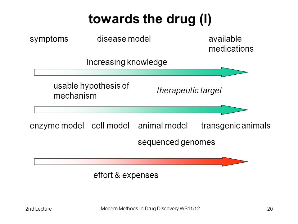 2nd Lecture Modern Methods in Drug Discovery WS11/12 20 towards the drug (I) symptoms disease model available medications Increasing knowledge usable hypothesis of mechanism enzyme model cell model animal model transgenic animals sequenced genomes effort & expenses therapeutic target