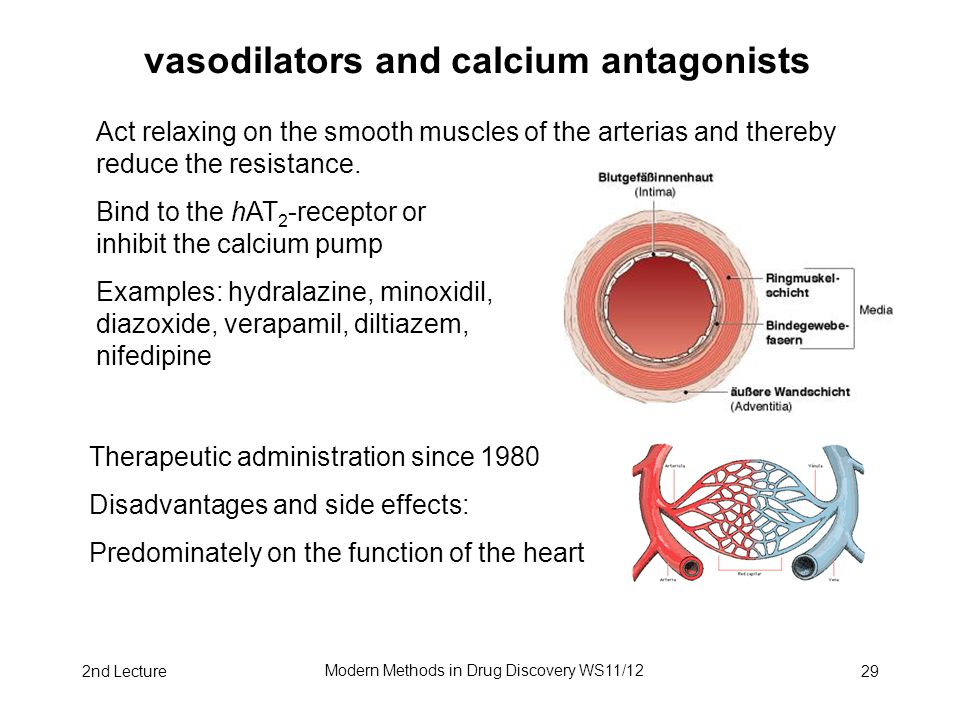 2nd Lecture Modern Methods in Drug Discovery WS11/12 29 vasodilators and calcium antagonists Act relaxing on the smooth muscles of the arterias and thereby reduce the resistance.