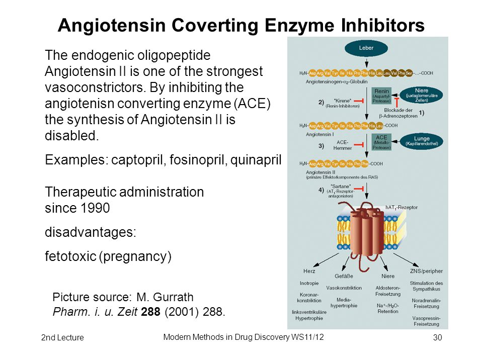 2nd Lecture Modern Methods in Drug Discovery WS11/12 30 Angiotensin Coverting Enzyme Inhibitors The endogenic oligopeptide Angiotensin II is one of th