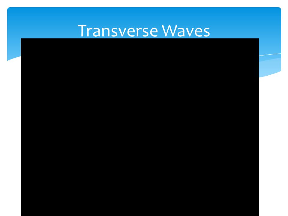  Transverse waves have perpendicular motion.  transverse wave: a wave in which the particles of the medium move perpendicularly to the direction the