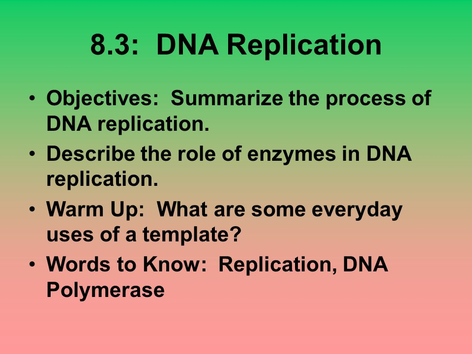 8.3: DNA Replication Objectives: Summarize the process of DNA replication. Describe the role of enzymes in DNA replication. Warm Up: What are some eve