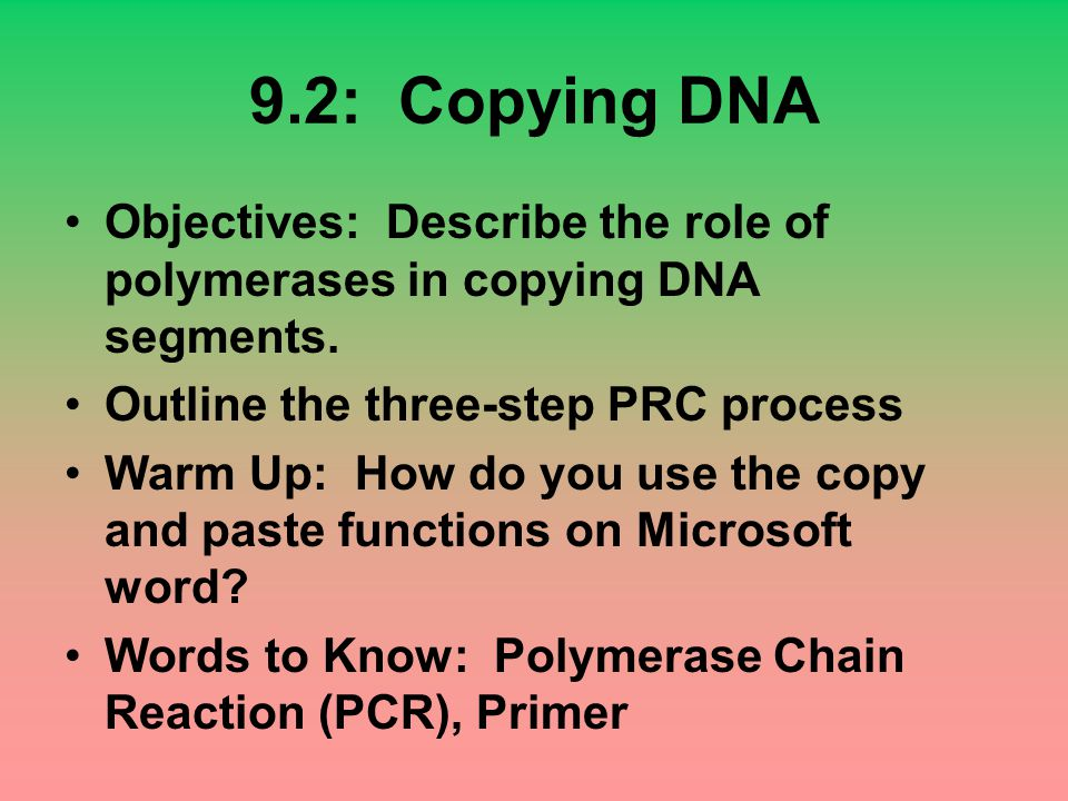 9.2: Copying DNA Objectives: Describe the role of polymerases in copying DNA segments. Outline the three-step PRC process Warm Up: How do you use the