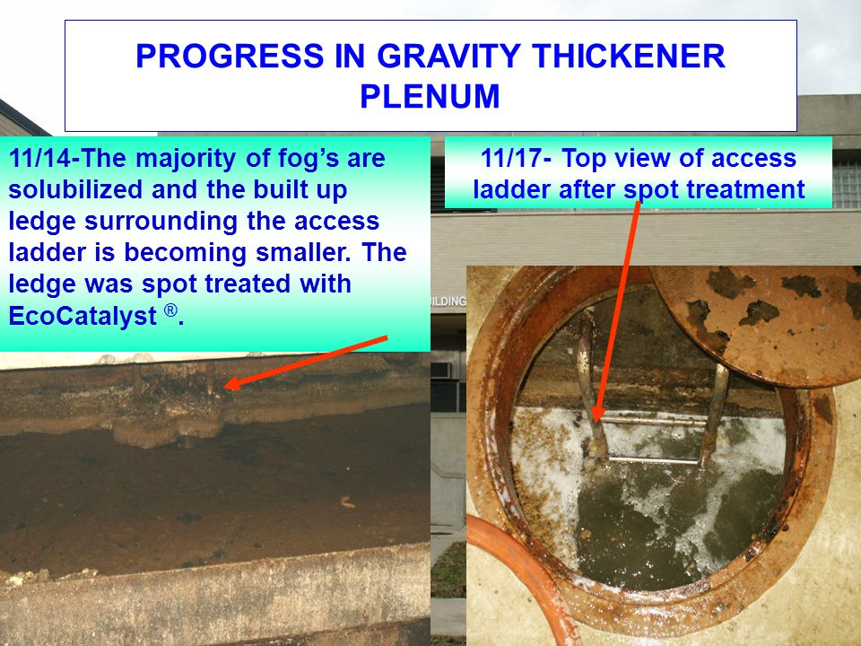 PROGRESS IN GRAVITY THICKENER PLENUM 11/14-The majority of fog's are solubilized and the built up ledge surrounding the access ladder is becoming smaller.