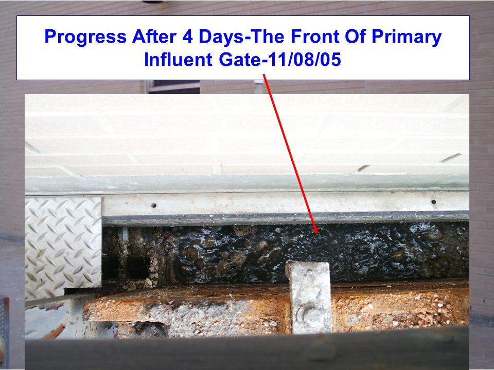 Progress After 4 Days-The Front Of Primary Influent Gate-11/08/05