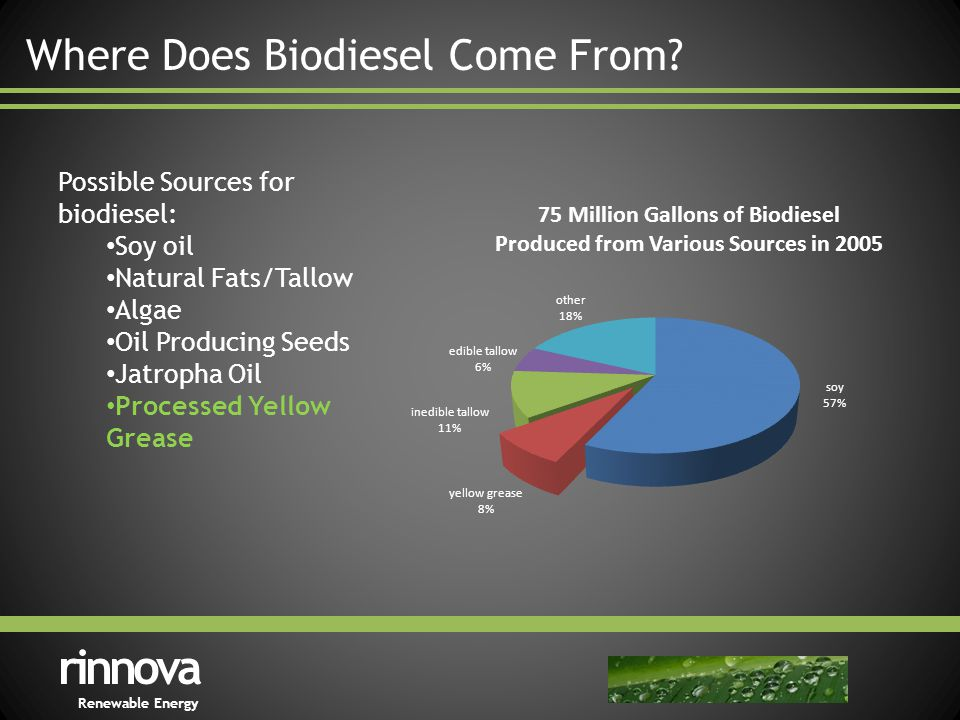 Where Does Biodiesel Come From.