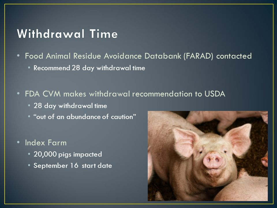 Food Animal Residue Avoidance Databank (FARAD) contacted Recommend 28 day withdrawal time FDA CVM makes withdrawal recommendation to USDA 28 day withdrawal time out of an abundance of caution Index Farm 20,000 pigs impacted September 16 start date