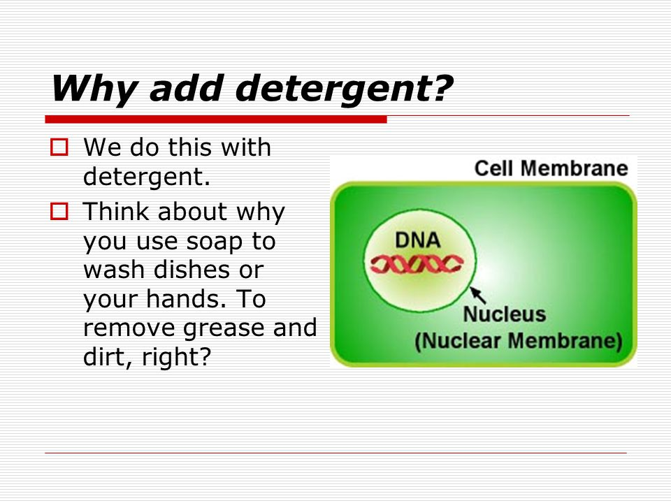 Why add detergent. We do this with detergent.