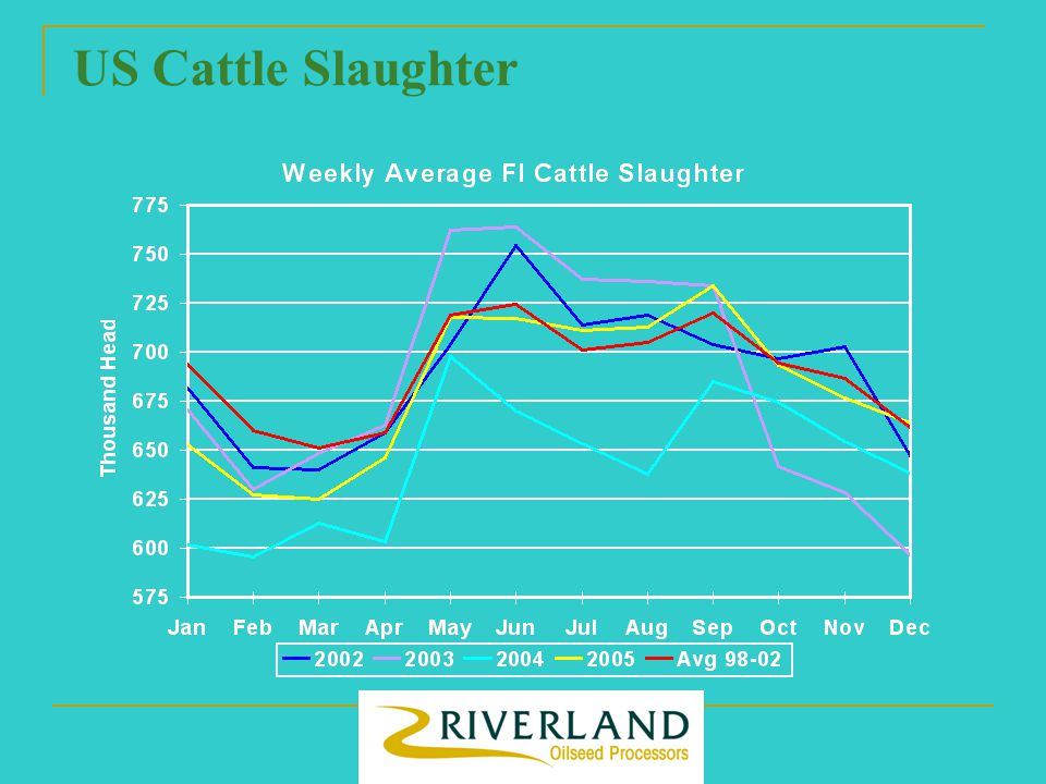 US Cattle Slaughter