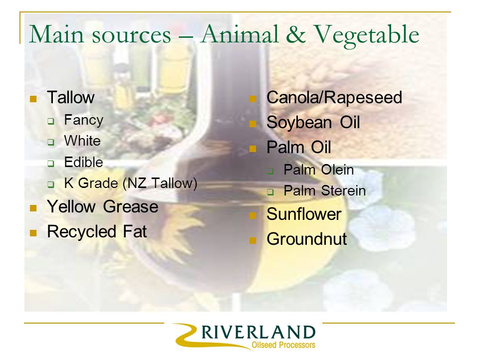Main sources – Animal & Vegetable Tallow  Fancy  White  Edible  K Grade (NZ Tallow) Yellow Grease Recycled Fat Canola/Rapeseed Soybean Oil Palm Oil  Palm Olein  Palm Sterein Sunflower Groundnut