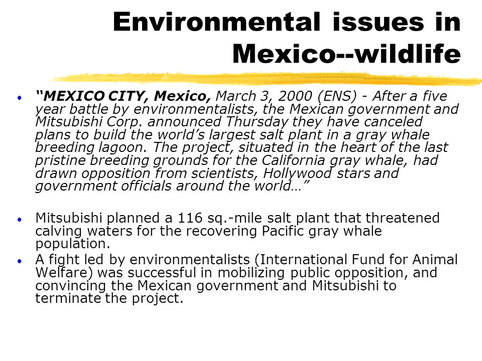 "Environmental issues in Mexico--wildlife  ""MEXICO CITY, Mexico, March 3, 2000 (ENS) - After a five year battle by environmentalists, the Mexican gove"