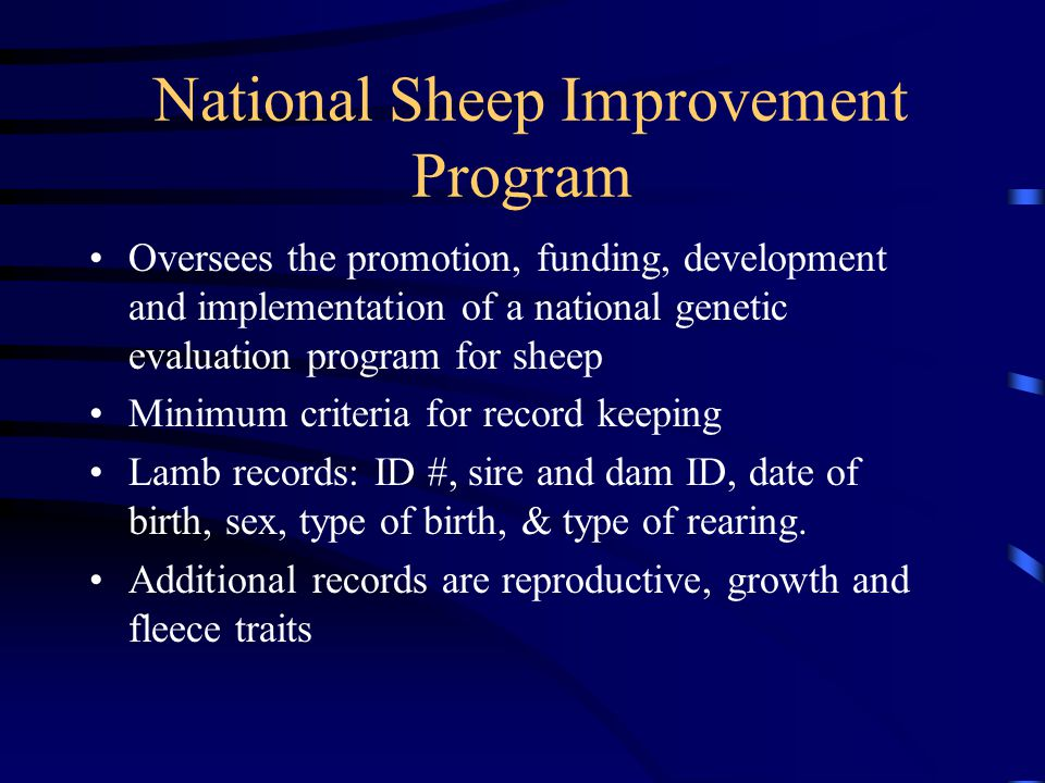 National Sheep Improvement Program Oversees the promotion, funding, development and implementation of a national genetic evaluation program for sheep
