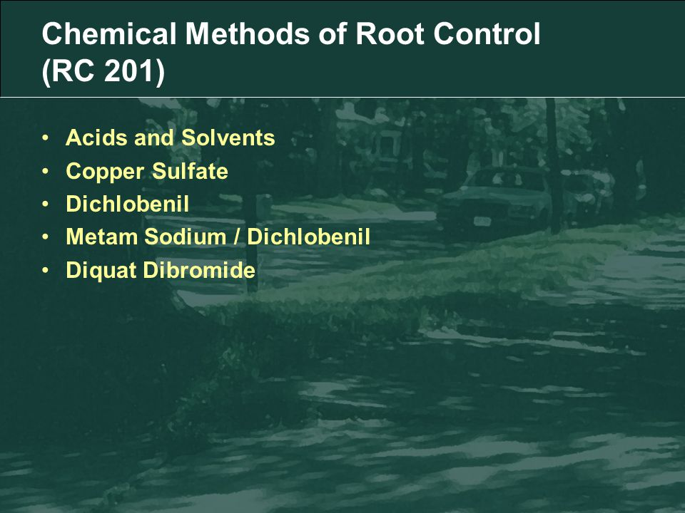 Chemical Methods of Root Control (RC 201) Acids and Solvents Copper Sulfate Dichlobenil Metam Sodium / Dichlobenil Diquat Dibromide