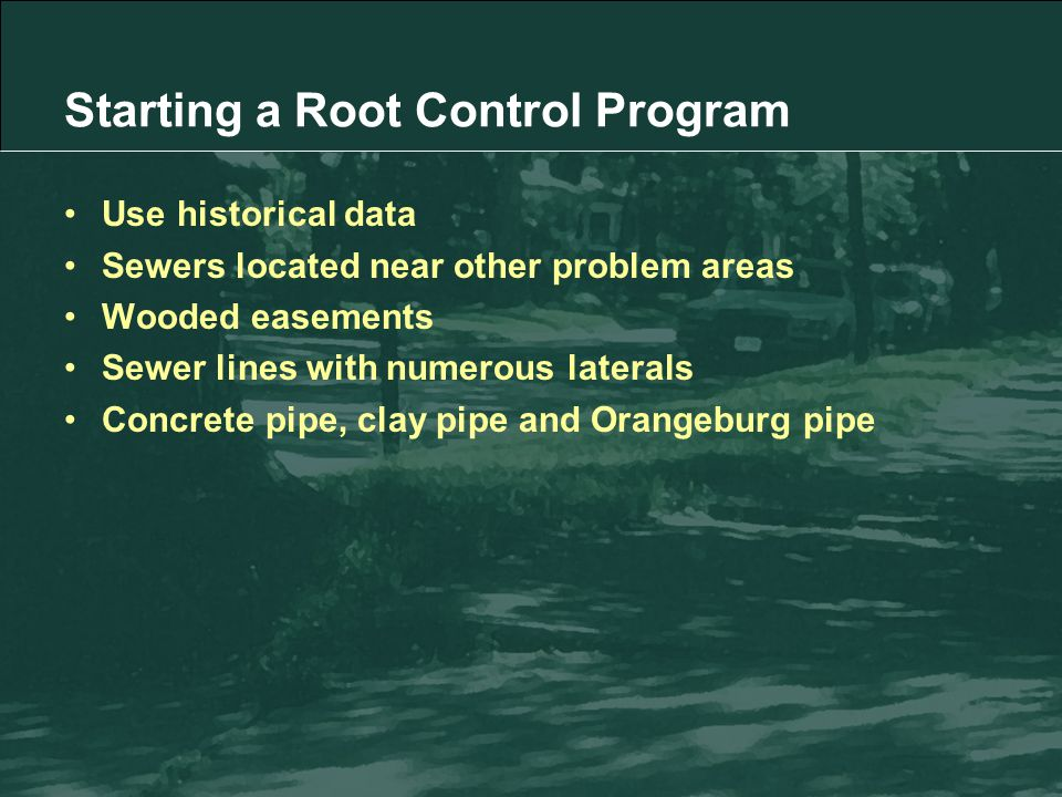 Starting a Root Control Program Use historical data Sewers located near other problem areas Wooded easements Sewer lines with numerous laterals Concrete pipe, clay pipe and Orangeburg pipe