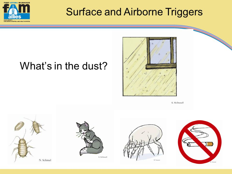 What's in the dust? Surface and Airborne Triggers