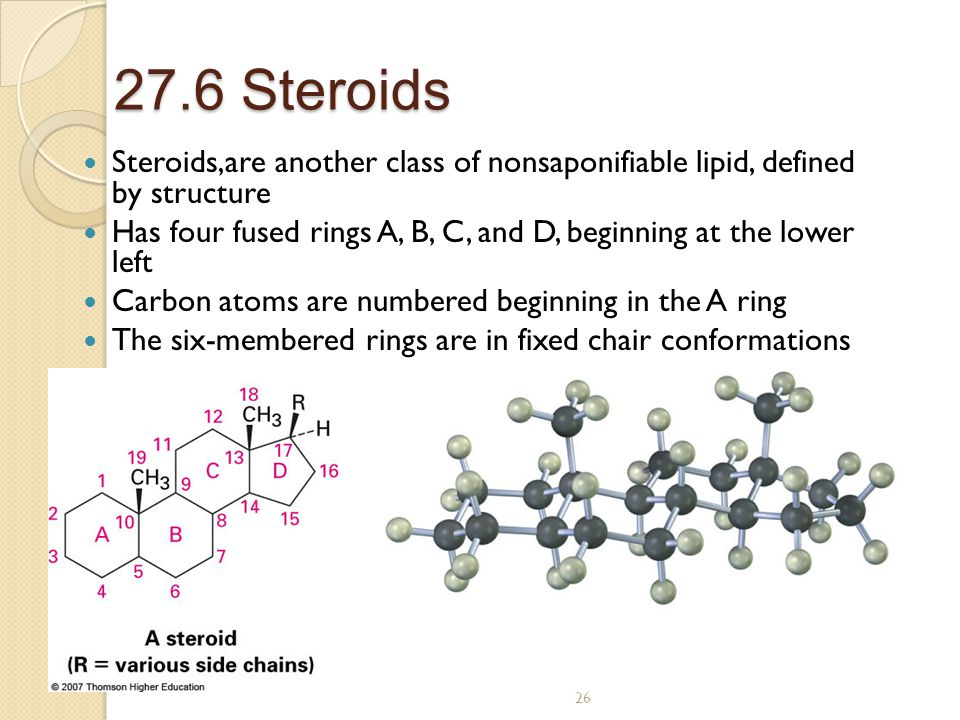 26 27.6 Steroids Steroids,are another class of nonsaponifiable lipid, defined by structure Has four fused rings A, B, C, and D, beginning at the lower left Carbon atoms are numbered beginning in the A ring The six-membered rings are in fixed chair conformations