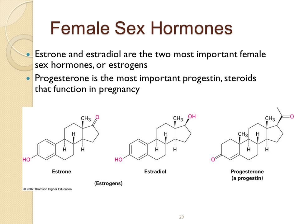 29 Female Sex Hormones Estrone and estradiol are the two most important female sex hormones, or estrogens Progesterone is the most important progestin, steroids that function in pregnancy