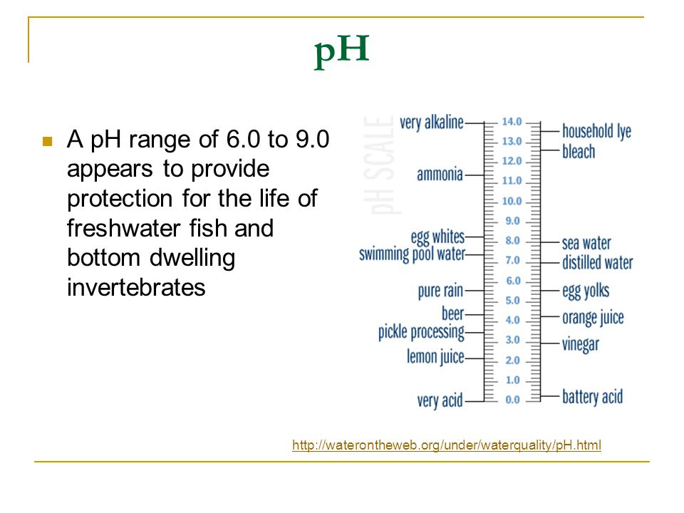 pH A pH range of 6.0 to 9.0 appears to provide protection for the life of freshwater fish and bottom dwelling invertebrates http://waterontheweb.org/under/waterquality/pH.html
