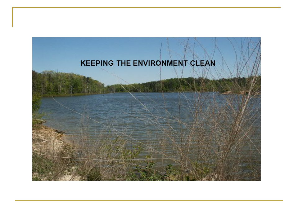 KEEPING THE ENVIRONMENT CLEAN