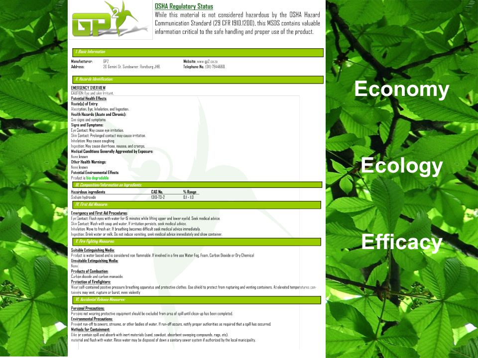 Economy Ecology Efficacy