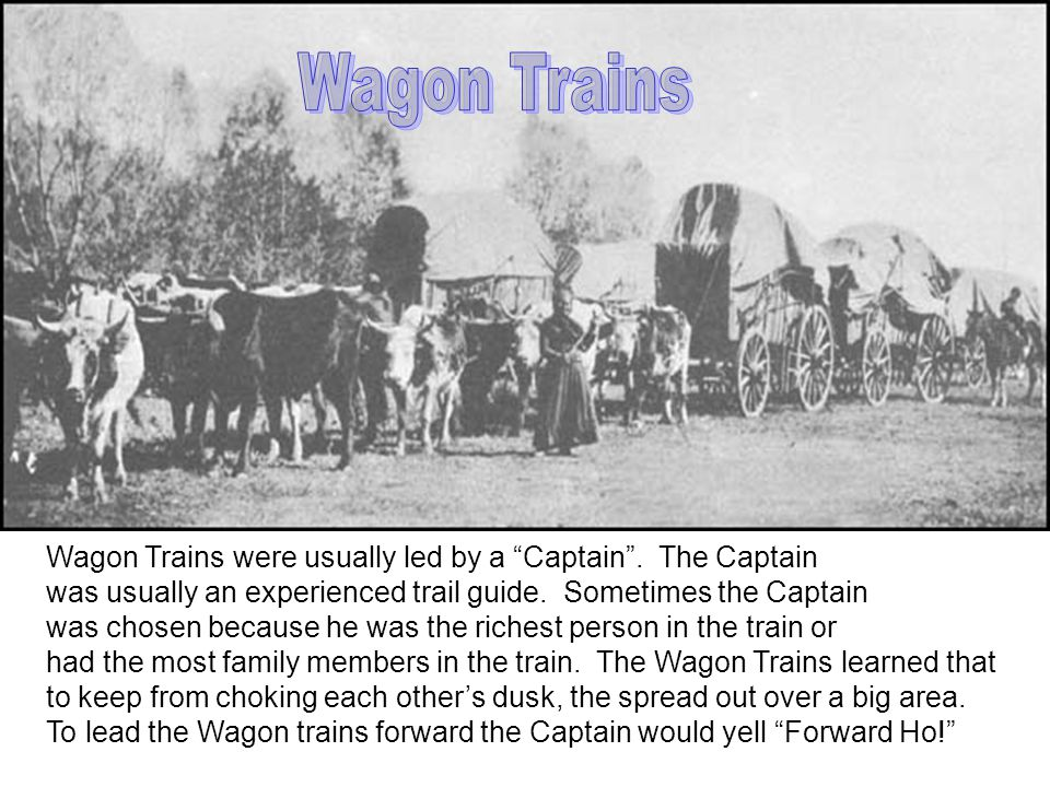 Wagon Trains were usually led by a Captain . The Captain was usually an experienced trail guide.