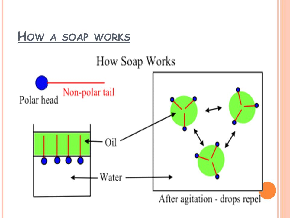 H OW A SOAP WORKS