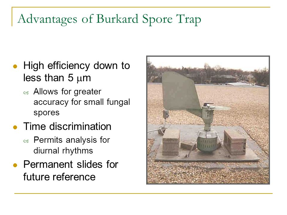 Advantages of Burkard Spore Trap High efficiency down to less than 5  m – Allows for greater accuracy for small fungal spores Time discrimination – Permits analysis for diurnal rhythms Permanent slides for future reference