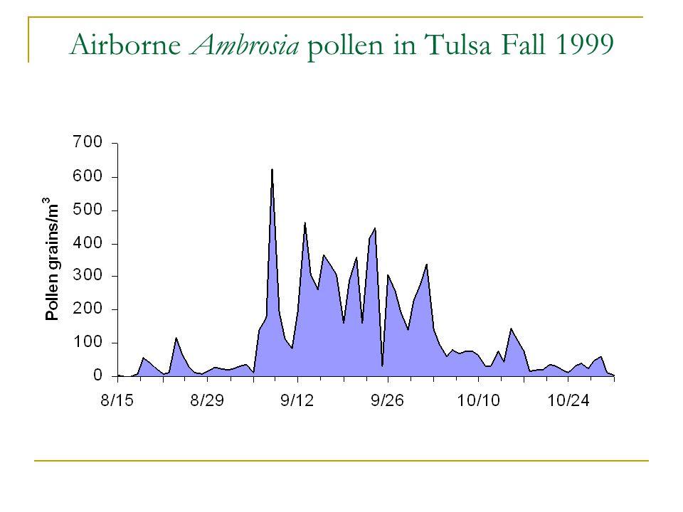 Airborne Ambrosia pollen in Tulsa Fall 1999