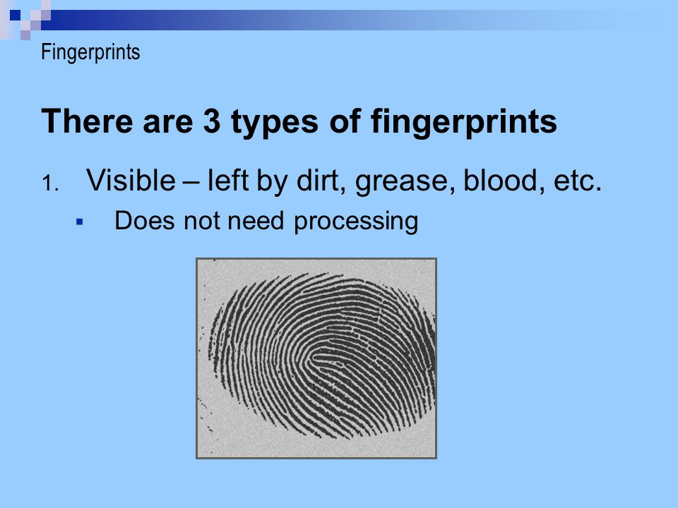There are 3 types of fingerprints 1. Visible – left by dirt, grease, blood, etc.  Does not need processing Fingerprints