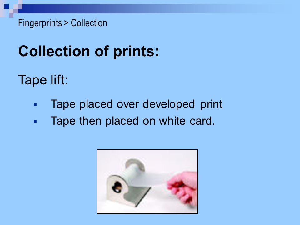 Collection of prints: Tape lift:  Tape placed over developed print  Tape then placed on white card. Fingerprints > Collection