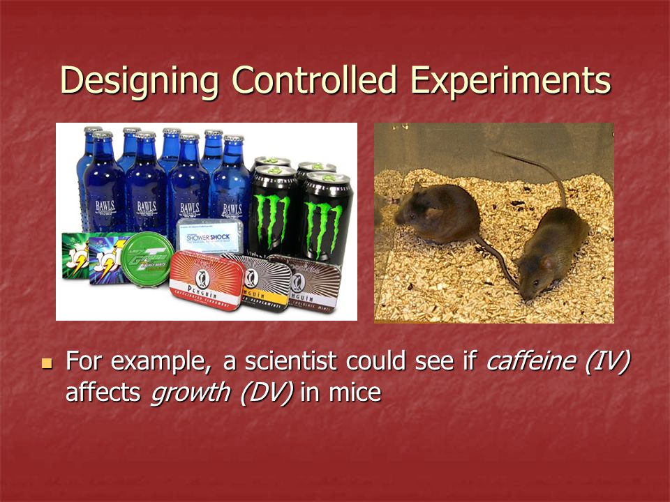 Designing Controlled Experiments For example, a scientist could see if caffeine (IV) affects growth (DV) in mice For example, a scientist could see if caffeine (IV) affects growth (DV) in mice