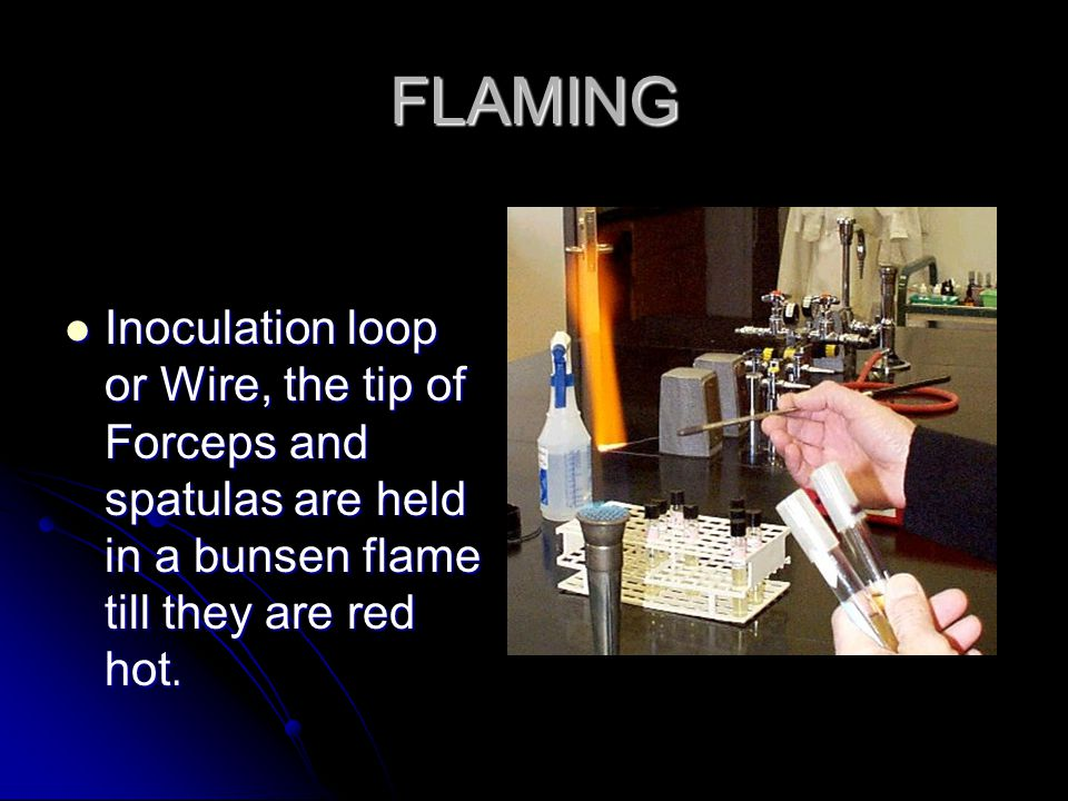 FLAMING Inoculation loop or Wire, the tip of Forceps and spatulas are held in a bunsen flame till they are red hot. Inoculation loop or Wire, the tip