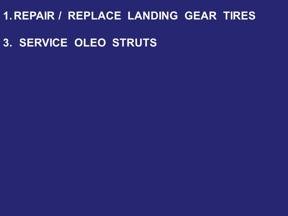 3.SERVICE OLEO STRUTS