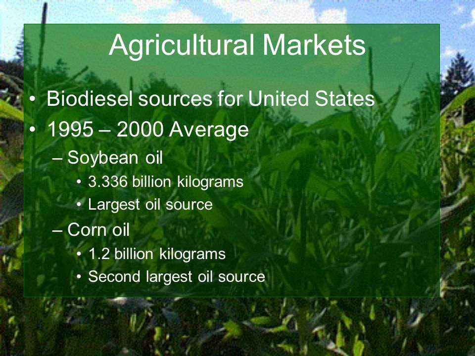 Agricultural Markets Biodiesel sources for United States 1995 – 2000 Average –Soybean oil 3.336 billion kilograms Largest oil source –Corn oil 1.2 billion kilograms Second largest oil source