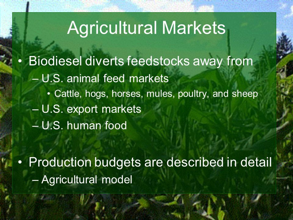 Agricultural Markets Biodiesel diverts feedstocks away from –U.S.