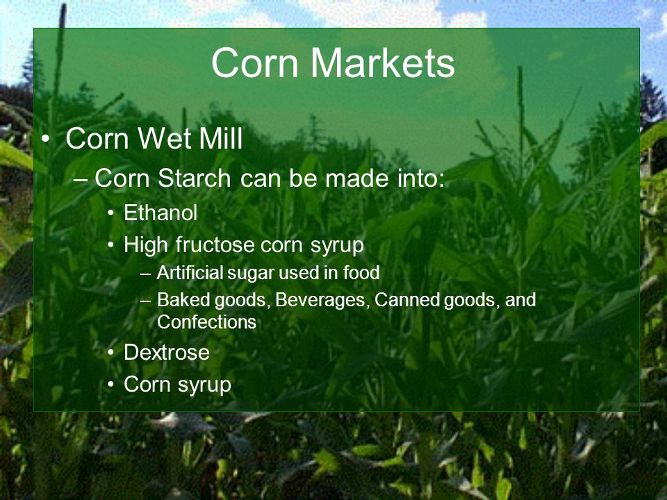 Corn Markets Corn Wet Mill –Corn Starch can be made into: Ethanol High fructose corn syrup –Artificial sugar used in food –Baked goods, Beverages, Canned goods, and Confections Dextrose Corn syrup