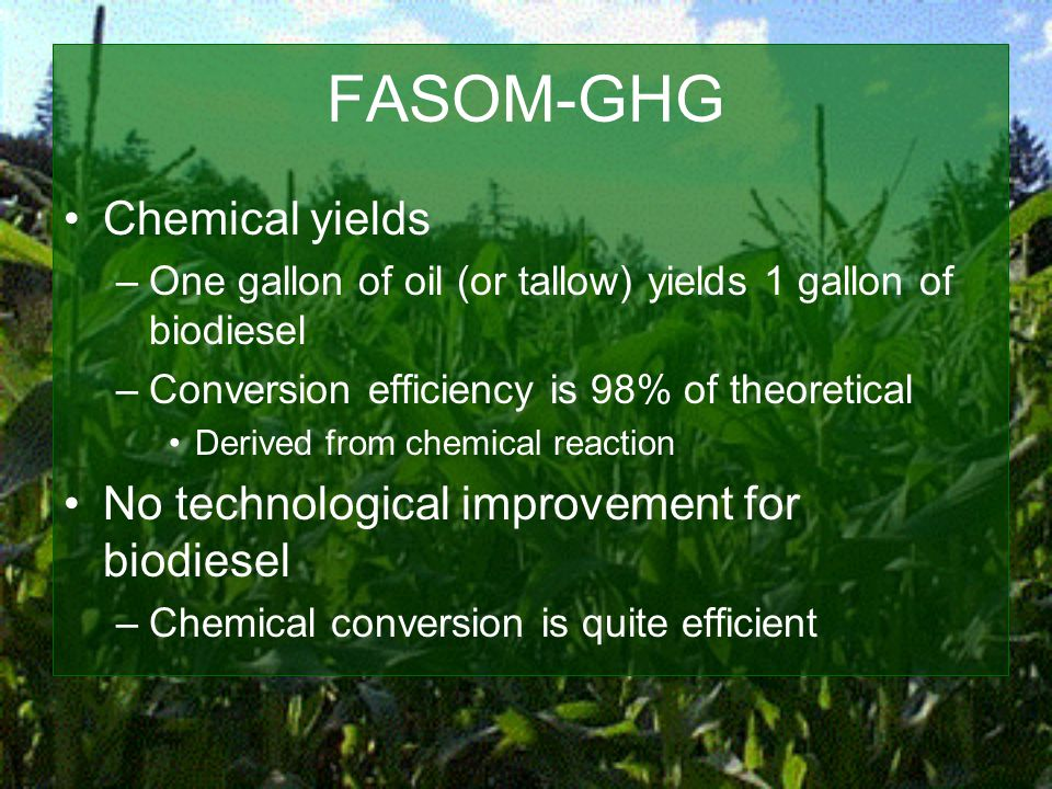 FASOM-GHG Chemical yields –One gallon of oil (or tallow) yields 1 gallon of biodiesel –Conversion efficiency is 98% of theoretical Derived from chemical reaction No technological improvement for biodiesel –Chemical conversion is quite efficient